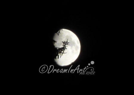 lune-dreaminart-001