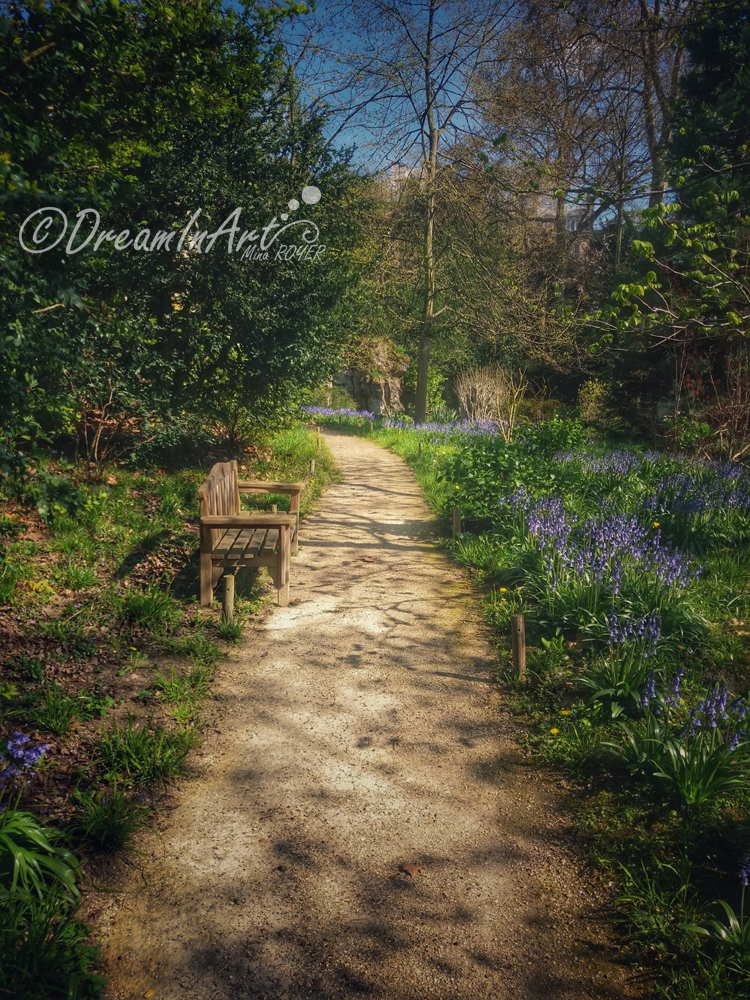 jardin-anglais-dreaminart-001