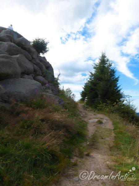 paysage-de-montagne-dreaminart-004