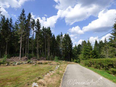 route-de-montagne-dreaminart-001-jpg
