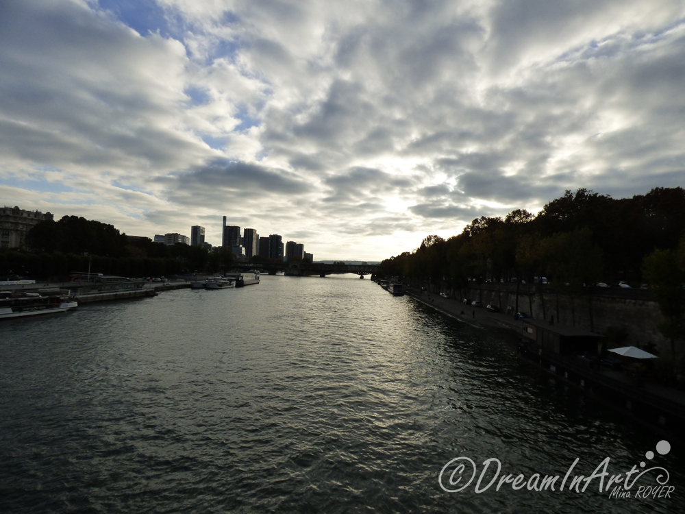 paris-seine-dreaminart-001